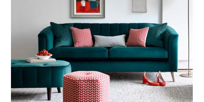 Pimlico 1-800x400